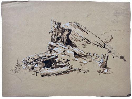 Wurzel und Grube, Bleistiftzeichnung auf Papier koloriert, 27,5 x 37,5 cm, unsigniert und undatiert, ca.1843, in Privatbesitz